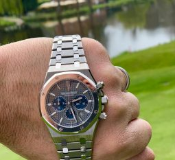 AUDEMARS PIGUET PLATINUM AND TITANIUM ROYAL OAK 26331IP.OO.1220IP