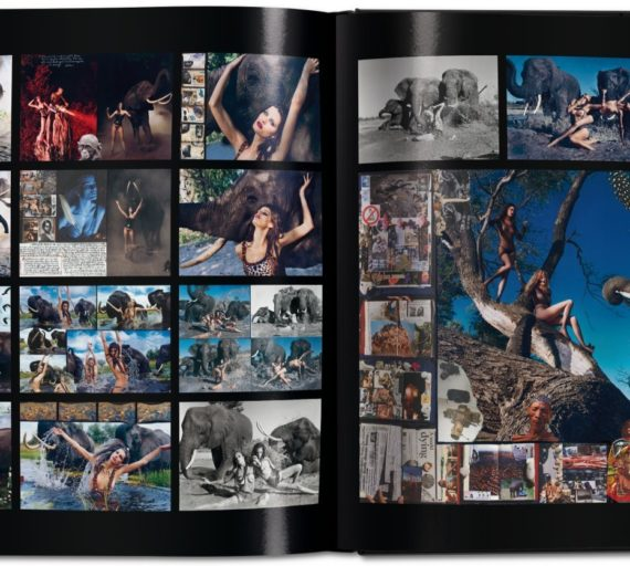 Pirelli. The Calendar. 50 Years and More Edition of 1,000 10